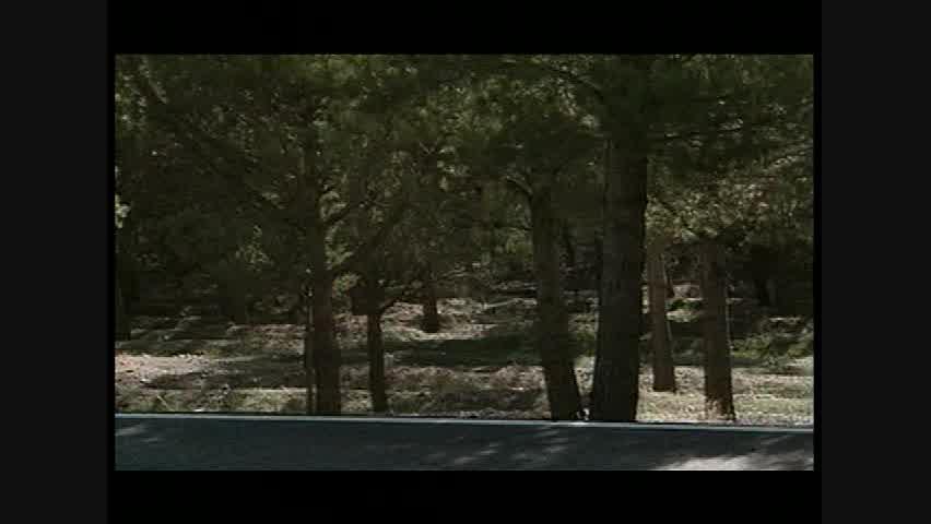 Mercedes-Benz SLK55 AMG - Running